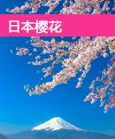 日本樱花攻略