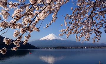 【KANTO BUFFET】眺望富士绝景 河口湖温泉1泊2食+ 3日东京广域周游券