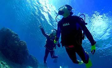 冲绳庆良间群岛浮潜、潜水一日游