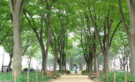 北京-日本东京+仙台4-10天自由行套餐
